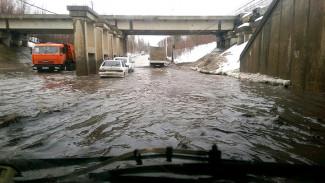 Новой службе для борьбы с потопами на улицах Воронежа доверят и ремонт дорог