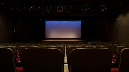 Воронежский кинотеатр покажет уникальную ретроспективу зарубежных фильмов о России