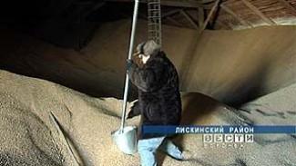 Сотрудники Россельхознадзора вышли на проверку воронежских закромов