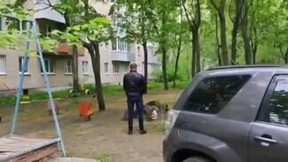 Воронежец сообщил об устроившем дебош во дворе пьяном таксисте