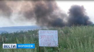 Чёрные клубы дыма от горящей несанкционированной свалки под Воронежем попали на видео