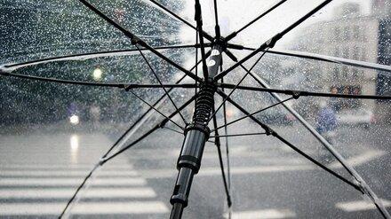 Последний понедельник июня принесёт в Воронежскую область похолодание и грозы
