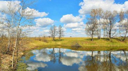 Погода в Воронеже побила температурный рекорд 28-летней давности