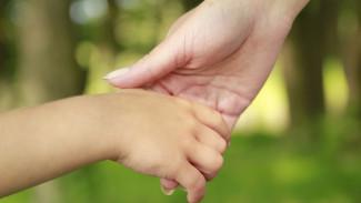 В Воронежской области исправившейся матери вернули сыновей