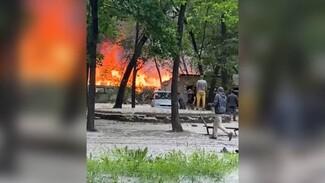 В Воронеже во дворе жилого дома вспыхнули сараи: появилось видео