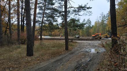 Воронежцев обеспокоила стройка в лесу возле «Олимпика»