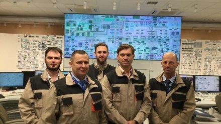 В Нововоронеже завершилась партнерская проверка Всемирной ассоциации операторов АЭС