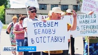 В Воронежской области жители районного центра требуют заменить его главу