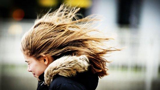 Спасатели вновь предупредили о сильном ветре в Воронежской области