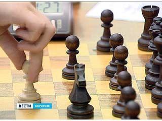 130 человек сражаются за звание лучшего шахматиста Воронежского региона