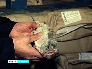 180 тонн рыбного деликатеса не попадут на прилавки воронежских магазинов