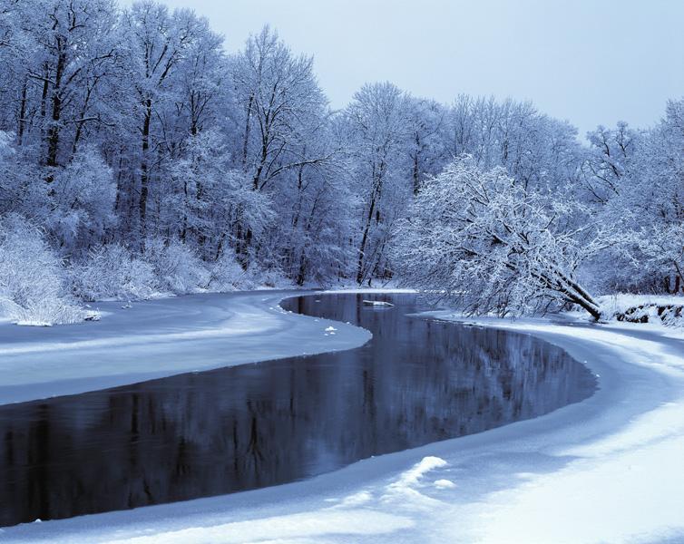 В реке под Воронежем нашли тело пропавшего без вести мужчины