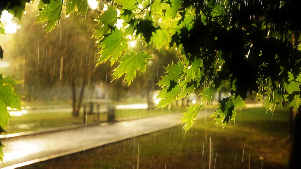 Прогноз погоды на 28.08.17
