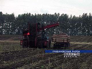 29 ноября - День работников сельского хозяйства