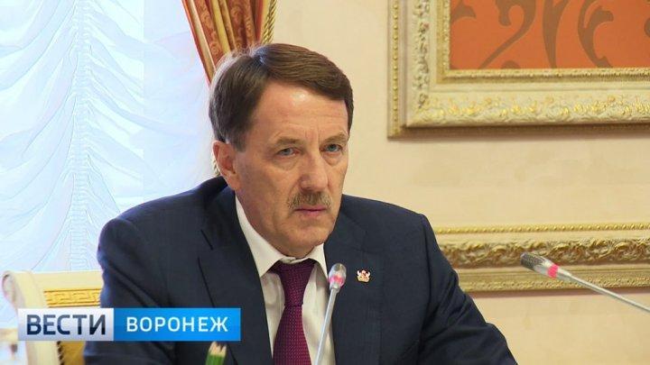 Алексей Гордеев о будущем мэре Воронежа: «Никаких варягов нам не надо»