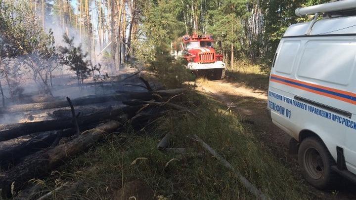 Спасатели МЧС потушили пожар площадью 5 га на Левом берегу Воронежа