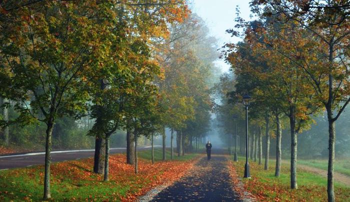 Синоптики: На этой неделе в Воронежской области резко похолодает