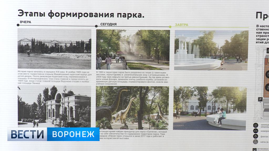 В Воронеже завершилось голосование за проекты благоустройства общественных пространств