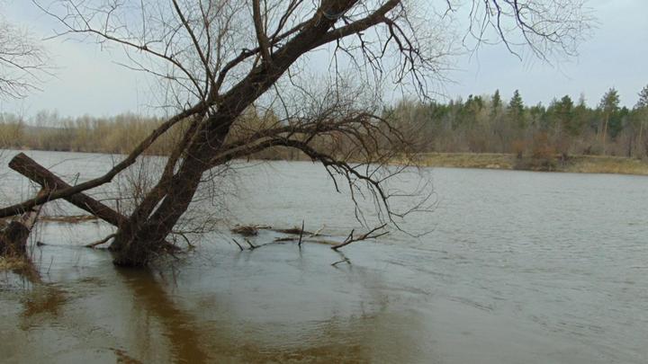 В Воронежской области при поездке по реке трое мужчин отравились газом: один из них умер