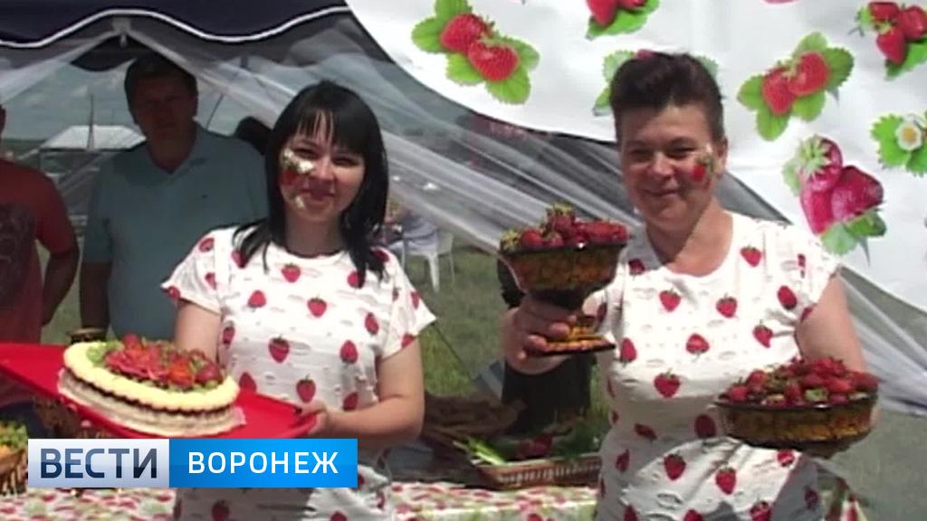 В Грибановском районе впервые прошёл фестиваль клубники