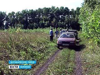 """40 гектаров бывшей пашни общества """"Рассвет"""" заросли деревьями"""