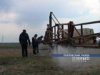 40 тысяч воронежских крестьян работают на вредном производстве