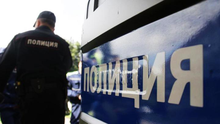 СК: Найденную в Воронежской области мёртвой школьницу могли убить из-за мобильного телефона