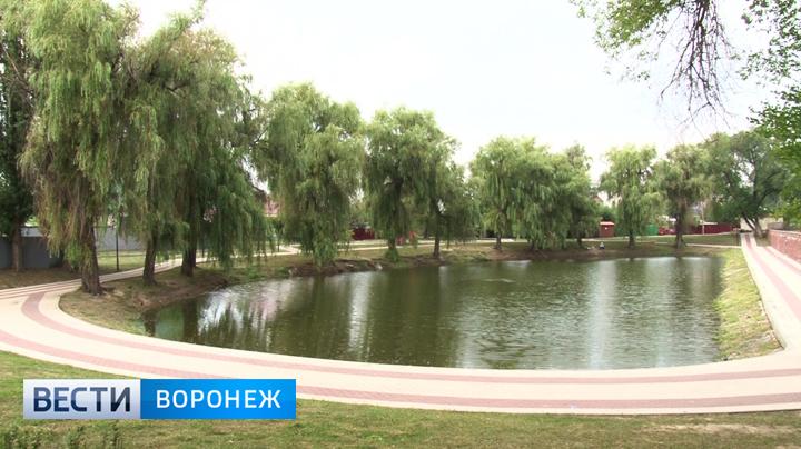 В Воронеже прошло официальное открытие обновлённого сквера «Чайка»