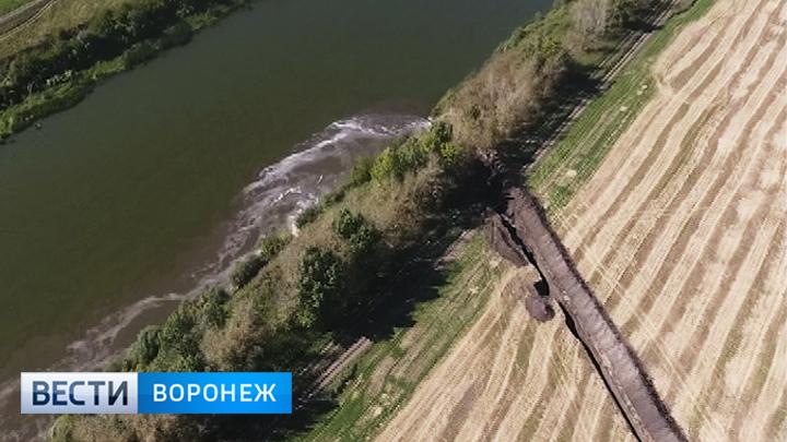 Воронежцы высказались за сохранение озера Круглое