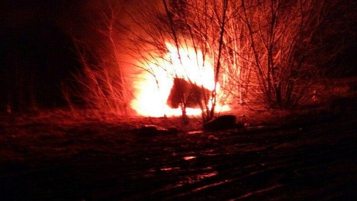 Очевидцы: Под Воронежем опрокинулась в кювет и сгорела Daewoo Nexia