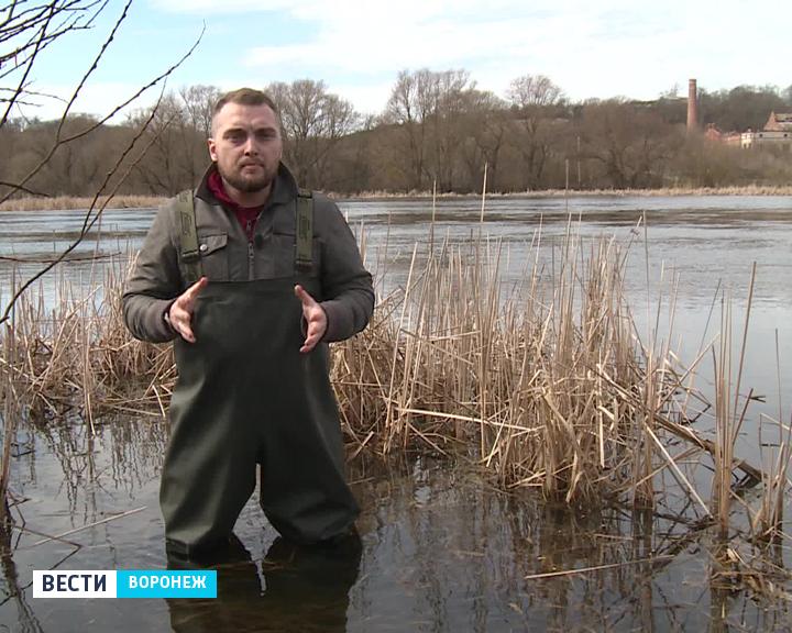 Прогноз погоды с Ильёй Савчуком на 25 – 26.03.17