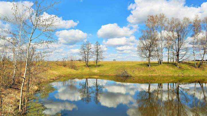 Синоптики рассказали о погоде в Воронежской области в апреле
