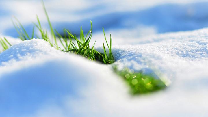Астрономическая весна в Воронежской области начнётся морозами