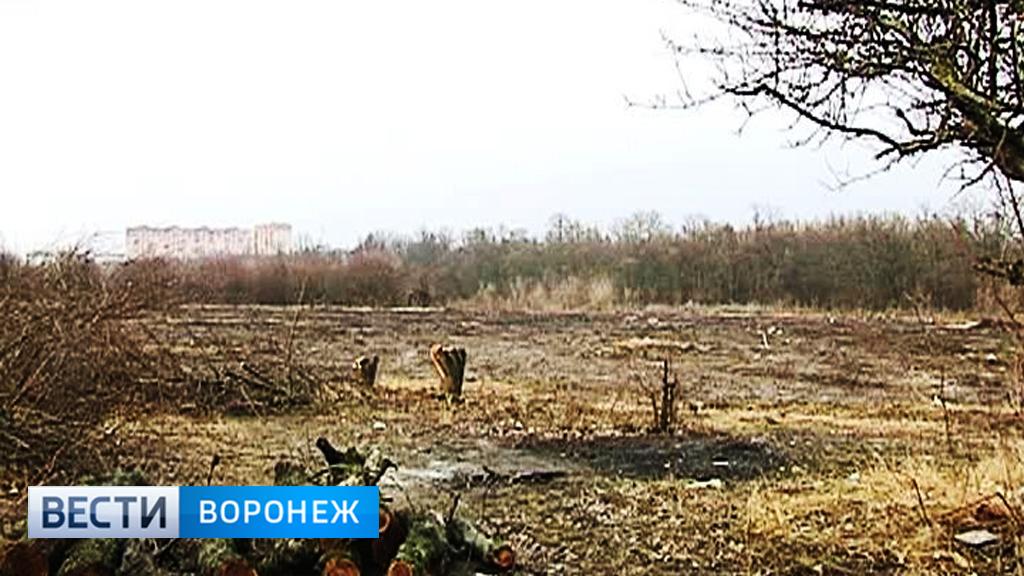 Прокуратура подала ещё один иск о возврате проданной земли в яблоневом саду Воронежа