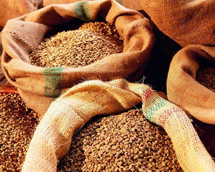 Воронежская область вот-вот выйдет на международный рынок сельскохозяйственных кормов