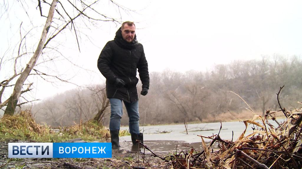 Прогноз погоды с Ильёй Савчуком на 12.12.17