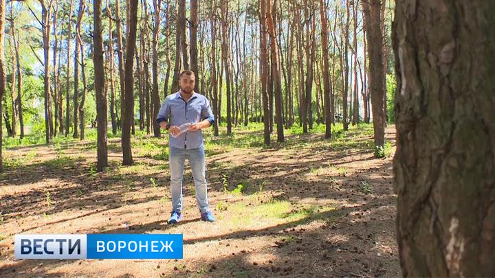 Прогноз погоды с Ильёй Савчуком на 22 – 23.07.2017
