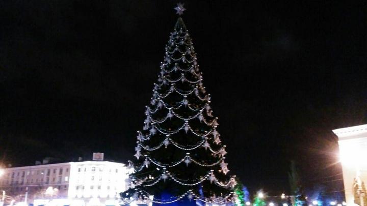 На главной площади Воронежа завершили установку ёлки