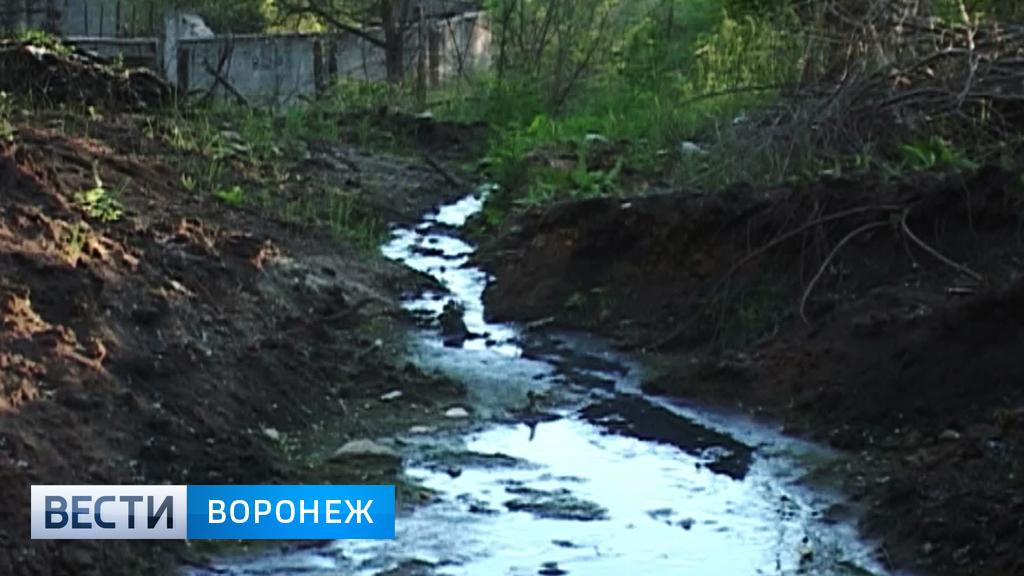 В Воронежской области военная часть сливает нечистоты в овраг рядом с селом