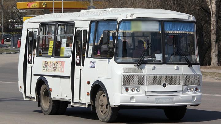 В Воронеже курсирующие до аэропорта автобусы большой вместимости заменят на «ПАЗы»
