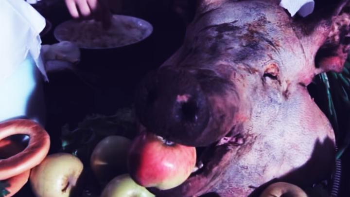 Клип про воронежский университет набирает популярность в интернете