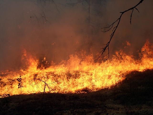 В Острогожске ночью полыхали крупные пожары