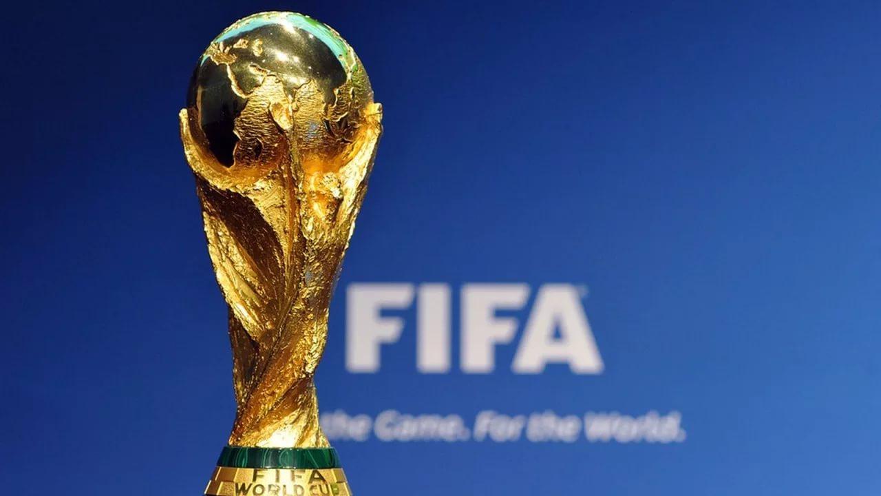 Стало известно, когда Кубок мира по футболу приедет в Воронеж