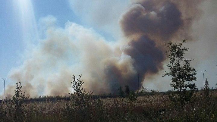 Пожар в Отрожке Воронежа выехали тушить 76 сотрудников МЧС и 17 машин