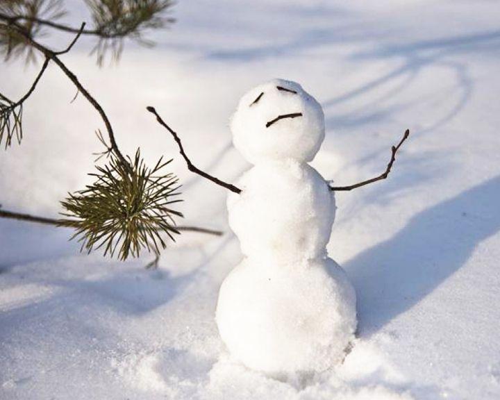 Жителей Воронежской области ждут резкие перепады температуры и мокрый снег
