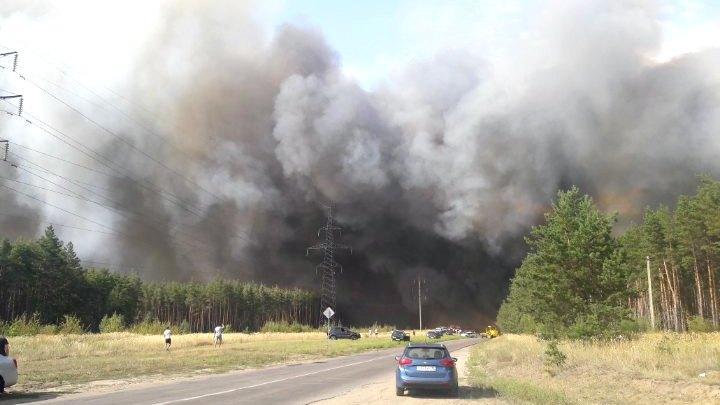 В Лисках рядом с больницей загорелась лесная подстилка