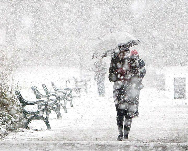 Спасатели: Воронежцев ждут метель и снежные заносы