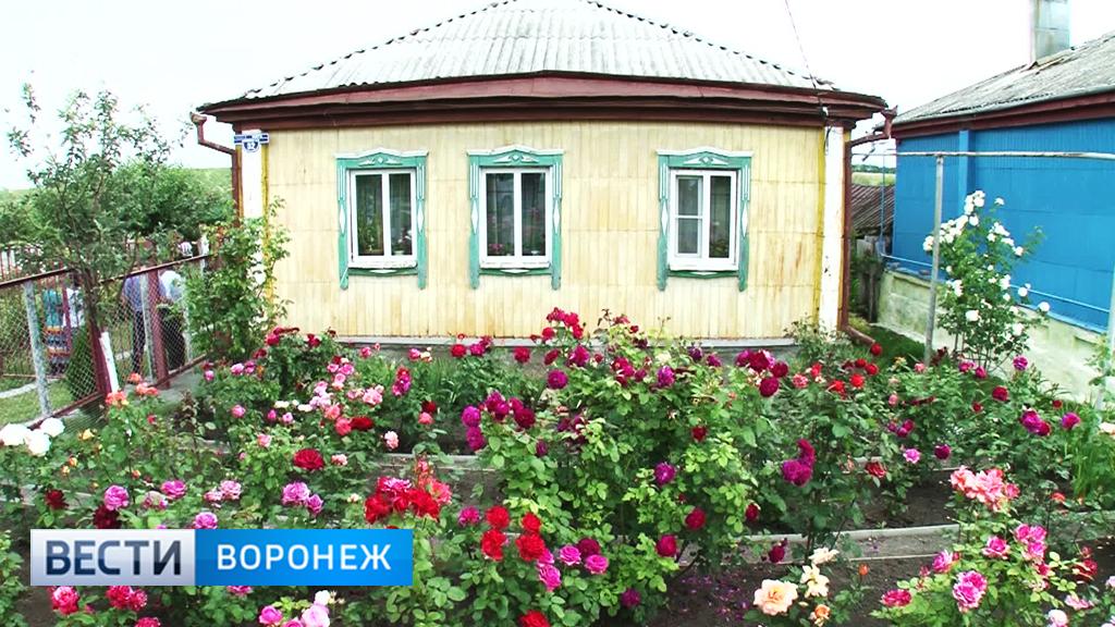 В Воронежской области стартовал конкурс на «Самое красивое село»