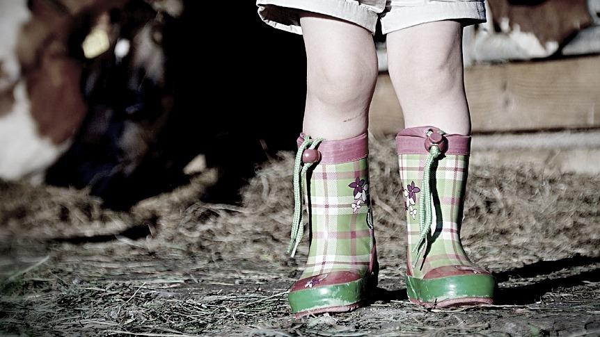 Дело о побоях 5-летней девочки из Воронежской области дошло до главы СКР