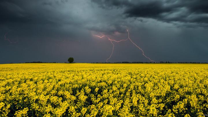Прогноз погоды на 26.05.17